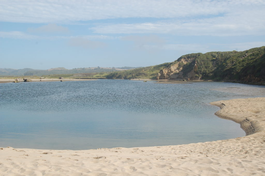 Website2-Pescadero