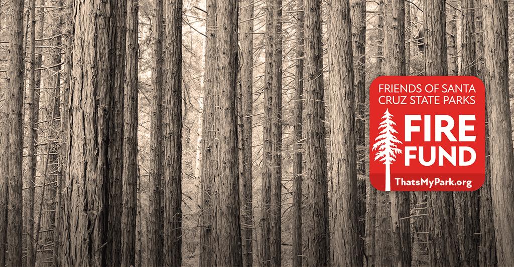 FireFund-WebSlider-v6-72dpi